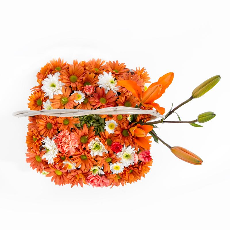 mandar flores DF