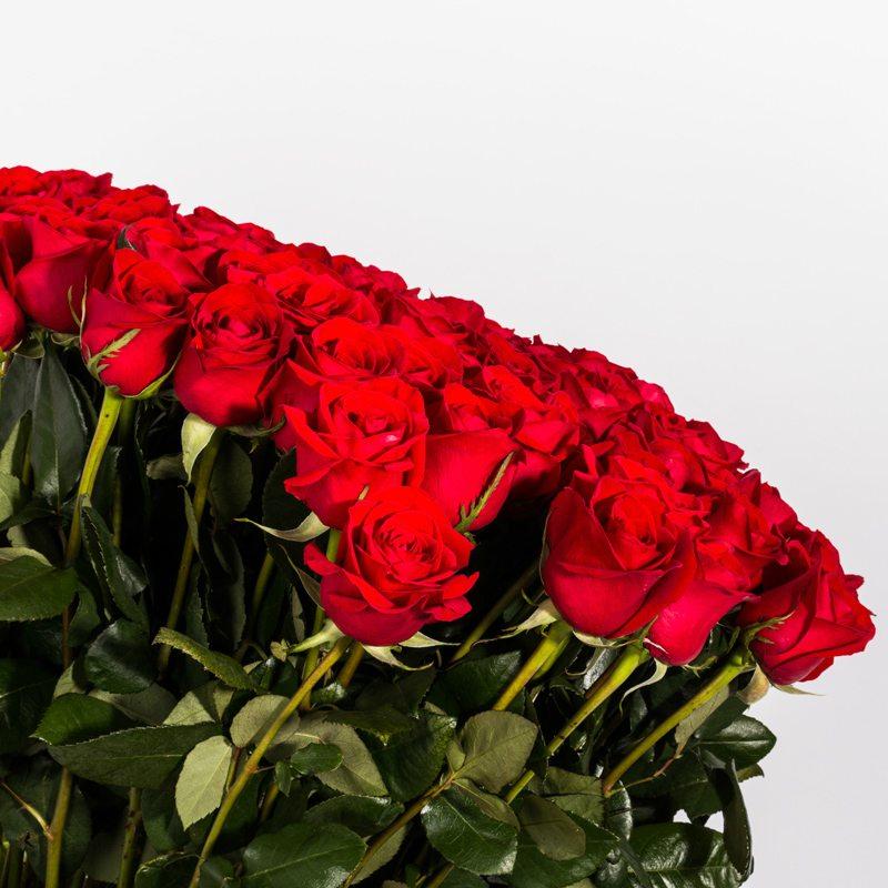 canasta 100 rosas 2