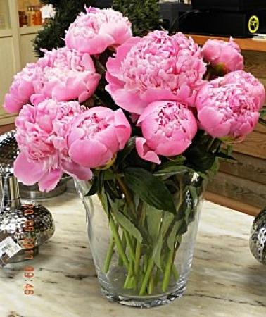 florerias en Santa Fe DF
